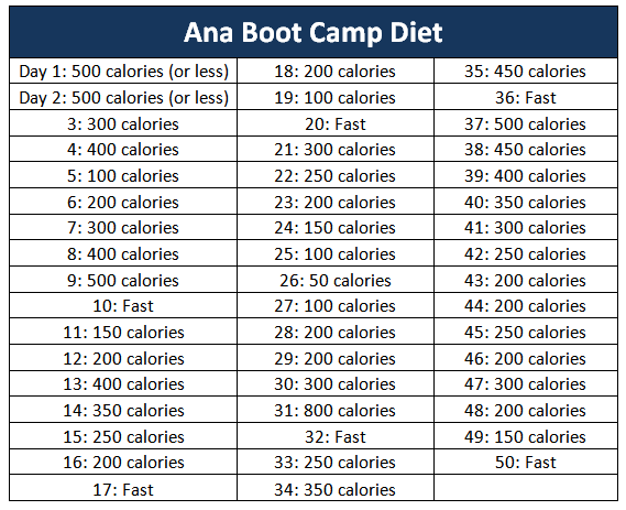 ANA Bootcamp Diet barbara hot lady ill salma hayak day1