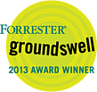 Click for the Forrester Groundswell 2013 Award Winner