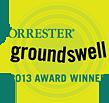 Click for the Forrester Groundswell 2013 Award Winner